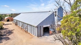 Rural / Farming commercial property for sale at Hoyleton Silo Complex Hoyleton SA 5453