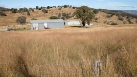 Rural / Farming commercial property for sale at Lot 15 Gunyah Road Tenterfield NSW 2372