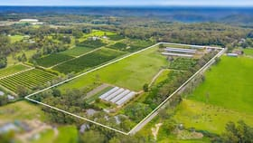 Rural / Farming commercial property for sale at 10 Lillicrapps Road Mangrove Mountain NSW 2250