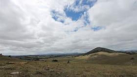 Rural / Farming commercial property for sale at 94 Reservoir Lane Braidwood NSW 2622