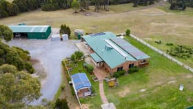 Rural / Farming commercial property for sale at 320 Badger Head Road Badger Head TAS 7270