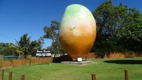 Rural / Farming commercial property for sale at 47 Flemington Road Bowen QLD 4805