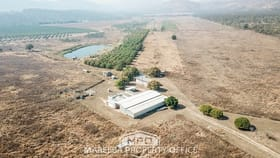 Rural / Farming commercial property for sale at 275 Veness Road Dimbulah QLD 4872