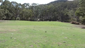 Rural / Farming commercial property for sale at Lot 80 Back Arm Road Middle Arm NSW 2580