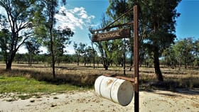 Rural / Farming commercial property for sale at 3747 Warialda Road Coolatai NSW 2402