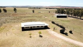 Rural / Farming commercial property for sale at 4731 Brand Highway Beermullah WA 6503