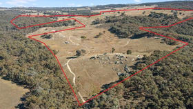 Rural / Farming commercial property for sale at 181 MCFEETERS ROAD Beechworth VIC 3747