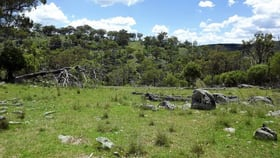 Rural / Farming commercial property for sale at 181 Tent Hill Road Emmaville NSW 2371