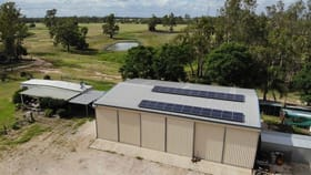 Rural / Farming commercial property for sale at Five Mile/772 Wondai Road Chinchilla QLD 4413