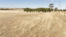Rural / Farming commercial property for sale at 'Roselynn' 119 Bowmans Road Manoora SA 5414