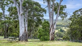 Rural / Farming commercial property for sale at 230 Harolds Cross Road Braidwood NSW 2622