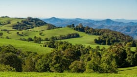 Rural / Farming commercial property for sale at 681 ROCKY CREEK ROAD Dorrigo NSW 2453