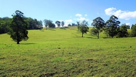 Rural / Farming commercial property for sale at 1275 The Tops Road Nowendoc NSW 2354