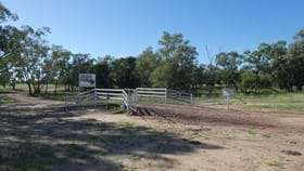 Rural / Farming commercial property for sale at Goondiwindi QLD 4390