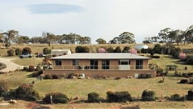 Rural / Farming commercial property for sale at 302 Gunningrah Road Bombala NSW 2632