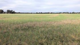 Rural / Farming commercial property for sale at . Rutherglen-Springhurst Road Springhurst VIC 3682