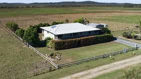 Rural / Farming commercial property for sale at 811 Kinchela Creek Right Bank Road Kinchela NSW 2440