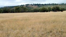 Rural / Farming commercial property for sale at CA 85 & 86 Boort-Wedderburn Road Wedderburn VIC 3518