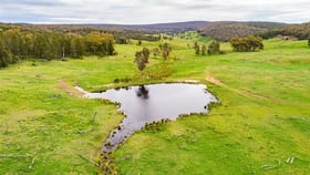 Rural / Farming commercial property for sale at 150 Mylbie Road Cowra NSW 2794