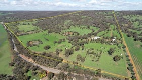 Rural / Farming commercial property for sale at 413 Wells Glover Road Bindoon WA 6502