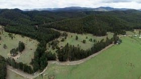 Rural / Farming commercial property for sale at Lot 3 Prices Creek Road Bunyah NSW 2429