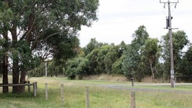 Rural / Farming commercial property for sale at 50 Roseneath Road Purnim VIC 3278