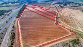 Rural / Farming commercial property for sale at A2+ Swanport Village Road Swanport SA 5253
