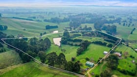Rural / Farming commercial property for sale at 161 PETERSONS ROAD Ellinbank VIC 3821