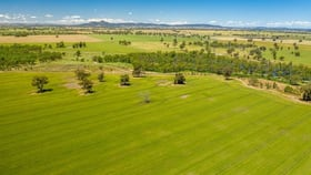 Rural / Farming commercial property for sale at 0 French Park - Bullenbung Road Milbrulong NSW 2656