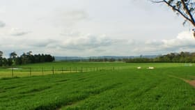 Rural / Farming commercial property for sale at Moss Vale NSW 2577