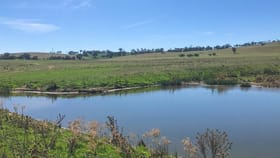 Rural / Farming commercial property for sale at 127 Calabash Road Murringo Young NSW 2594