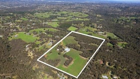 Rural / Farming commercial property for sale at 139-141 Brysons Road Wonga Park VIC 3115