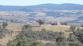 Rural / Farming commercial property for sale at Lot 1 Barelli Stanthorpe QLD 4380