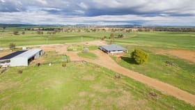 Rural / Farming commercial property for sale at 634 Loomberah Road Tamworth NSW 2340