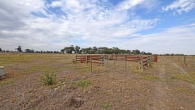 Rural / Farming commercial property for sale at 2, 3385 Midland Highway Stanhope VIC 3623