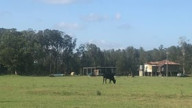 Rural / Farming commercial property for sale at Crescent Head NSW 2440
