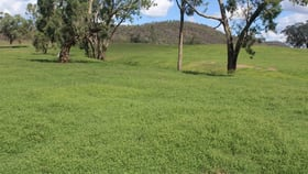 """Rural / Farming commercial property for sale at """" Olive Vale"""" Bingara NSW 2404"""