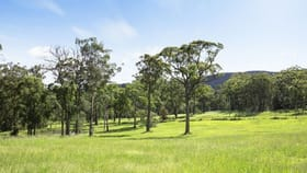 Rural / Farming commercial property for sale at 236 Mount Faulk Road Cooranbong NSW 2265