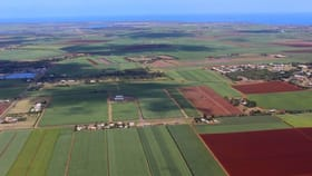 Rural / Farming commercial property for sale at 440 Bargara Road Qunaba QLD 4670