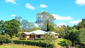 Rural / Farming commercial property for sale at 979 Afterlee Rd Kyogle NSW 2474