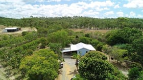 Rural / Farming commercial property for sale at 1755 Emu Park Road Tungamull QLD 4702