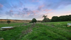 Rural / Farming commercial property for sale at 215 Barrys Road Barongarook West VIC 3249