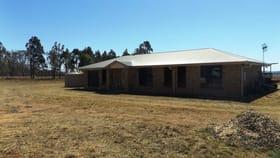 Rural / Farming commercial property for sale at 170 Mondure Wheatlands Road Wheatlands QLD 4606