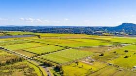 Rural / Farming commercial property for sale at 801- 845 Yandina- Coolum Road Yandina Creek QLD 4561