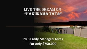 Rural / Farming commercial property for sale at 1169 Old Dyraaba Road Casino NSW 2470