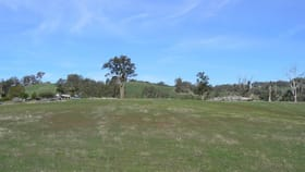 Rural / Farming commercial property for sale at 443 Thomson Brook  Road Thomson Brook WA 6239