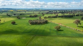 Rural / Farming commercial property for sale at 'Glenora'/87 Stony Park Rd Jindera NSW 2642
