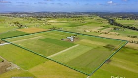 Rural / Farming commercial property for sale at 96 Haggartys  Lane Singleton NSW 2330