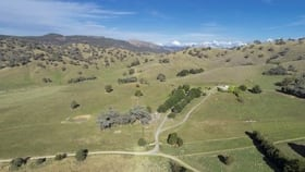 Rural / Farming commercial property for sale at 188 Cockatoo Road Tumut NSW 2720