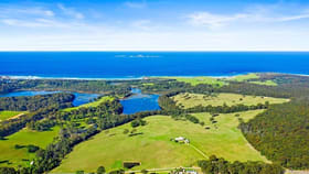 Rural / Farming commercial property sold at 7514 Princes Highway Narooma NSW 2546